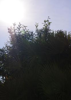 En effet, le soleil brille ce 22 décembre ! Photo Thibaut Carage