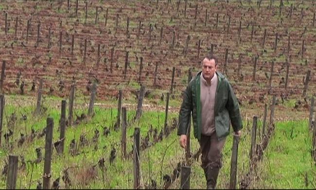 Emmanuel Giboulot, viticulteur de Beaune, est passé devant le tribunal correctionnel le 24 février dernier en Bourgogne pour avoir « refusé de polluer ». Crédit photo : D.R.