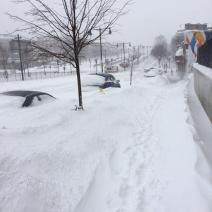 Les voitures du quartier de Brighton ont été ensevelies sous la neige (crédit: @BenjamLevy)