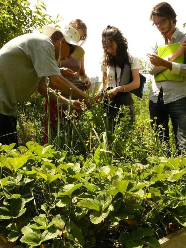 Malcolm Champoussin, ici à droite de l'image en compagnie de Ghislain Nicaise, biologiste, et de Sylvie Dupuy, chargée de mission agriculture à la métropole.(crédit photo: Loris Bavaro)