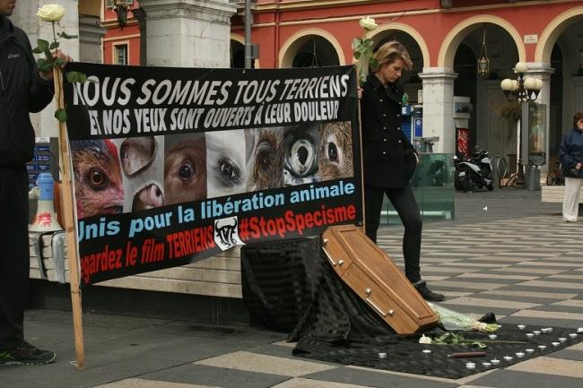 Une pancarte géante et un cercueil attirent l'œil des passants. (Crédit photo : Djenaba Diame)