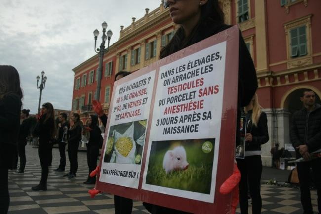 A Nice, les manifestants ont choisi des images et des mots chocs pour marquer les passants. (Crédit photo : Djenaba Diame)