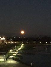 En famille ou seuls, ils sont nombreux à s'être équipés de filtres spéciaux pour voir la Super Lune. (Crédit : Nadia_Elka)