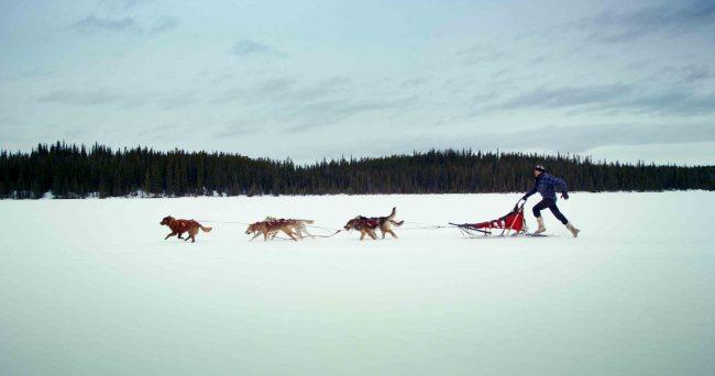 Koneline permet d'explorer les multiples paysages du Nord canadien (Crédit : Canada Wild)