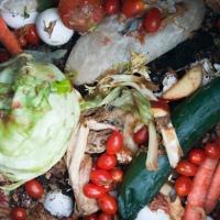 1/3 de la production mondiale de nourriture finit dans la poubelle
