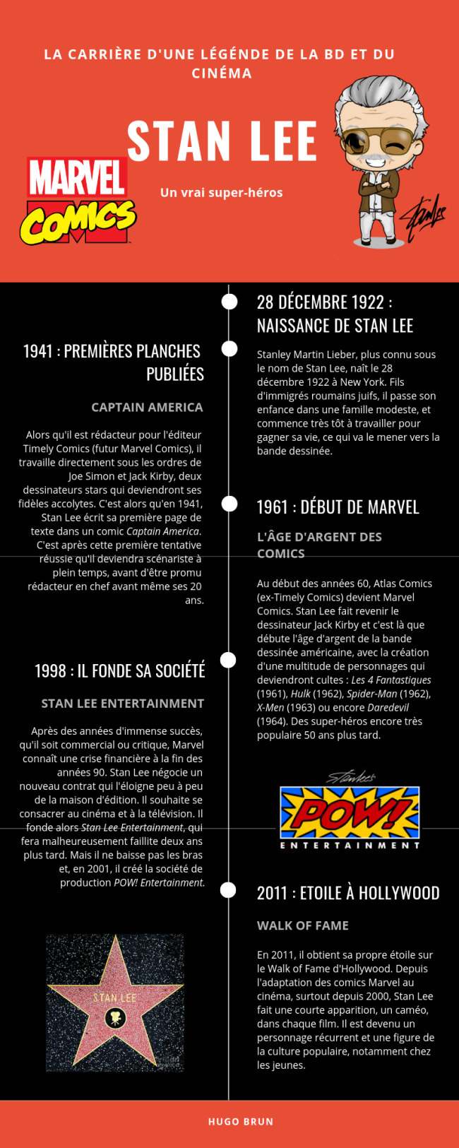 Professional Career Timeline (1)