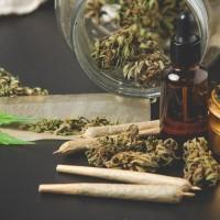 Cannabis : l'argent des jeunes part en fumée